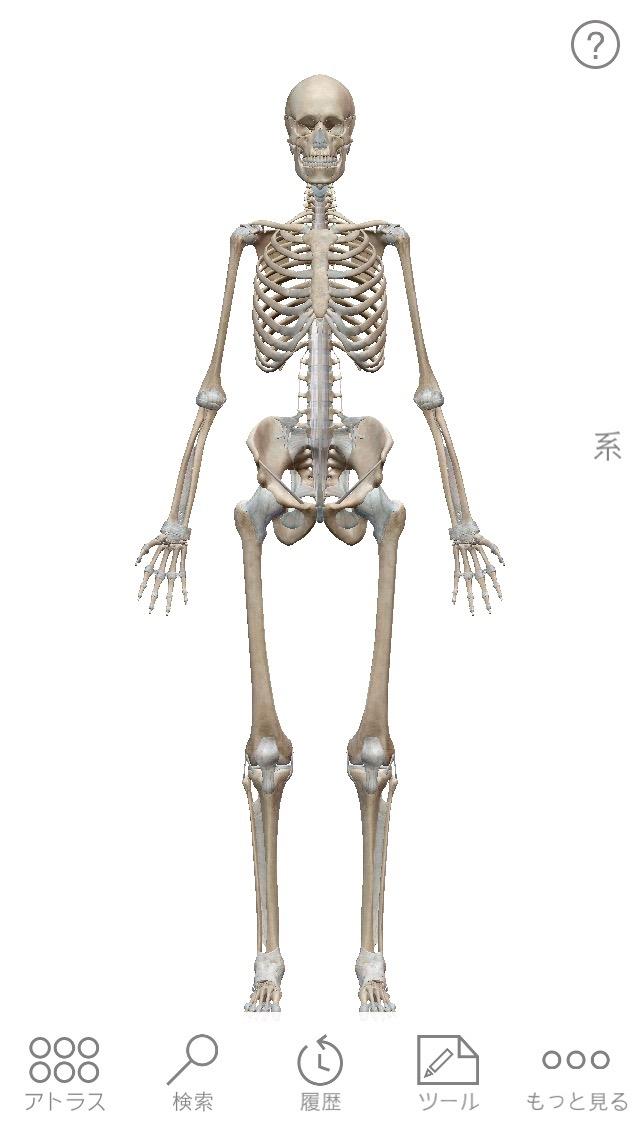 Human anatomy atlas 01